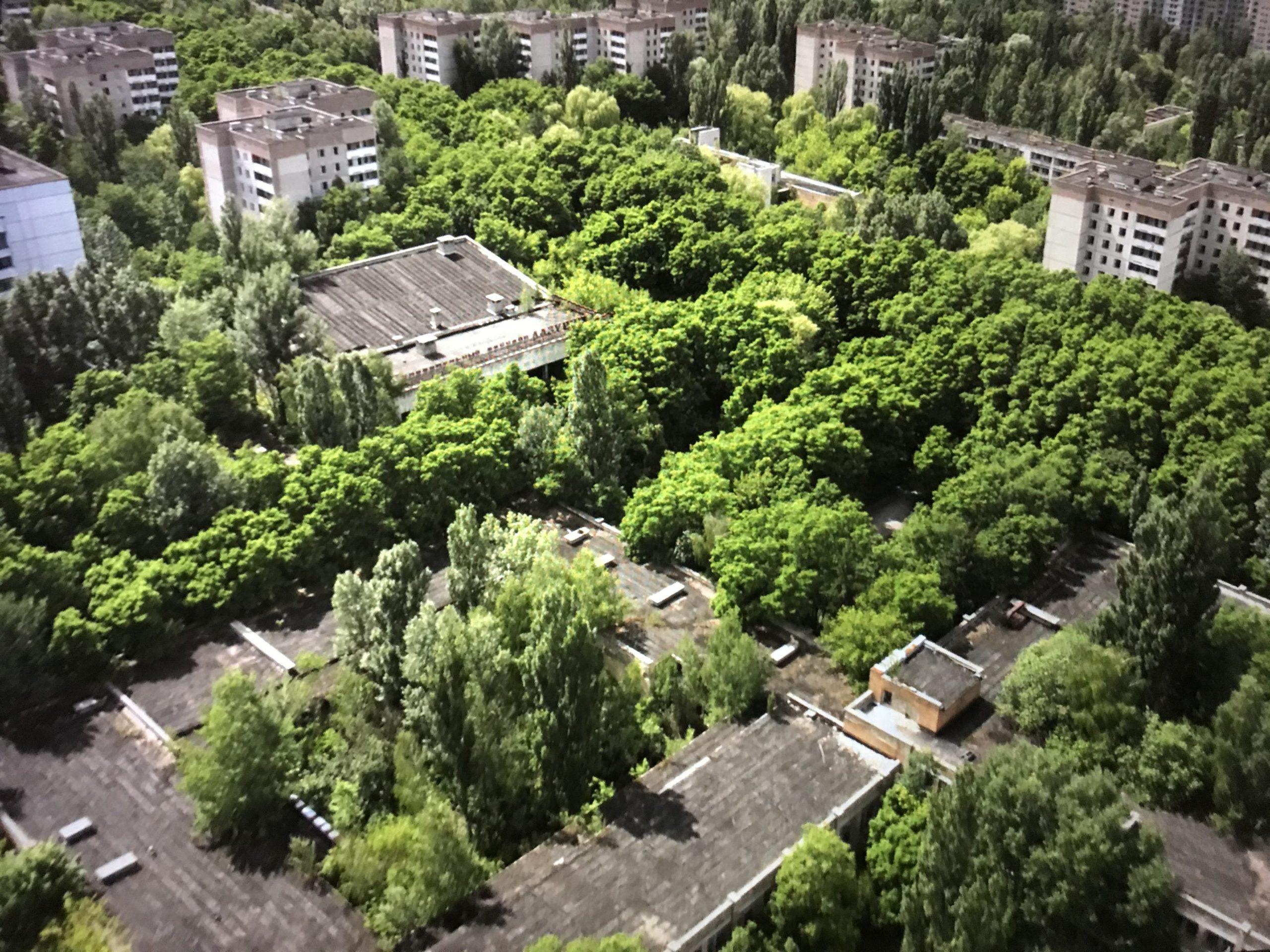 チェルノブイリ、森と建物を上空から見た