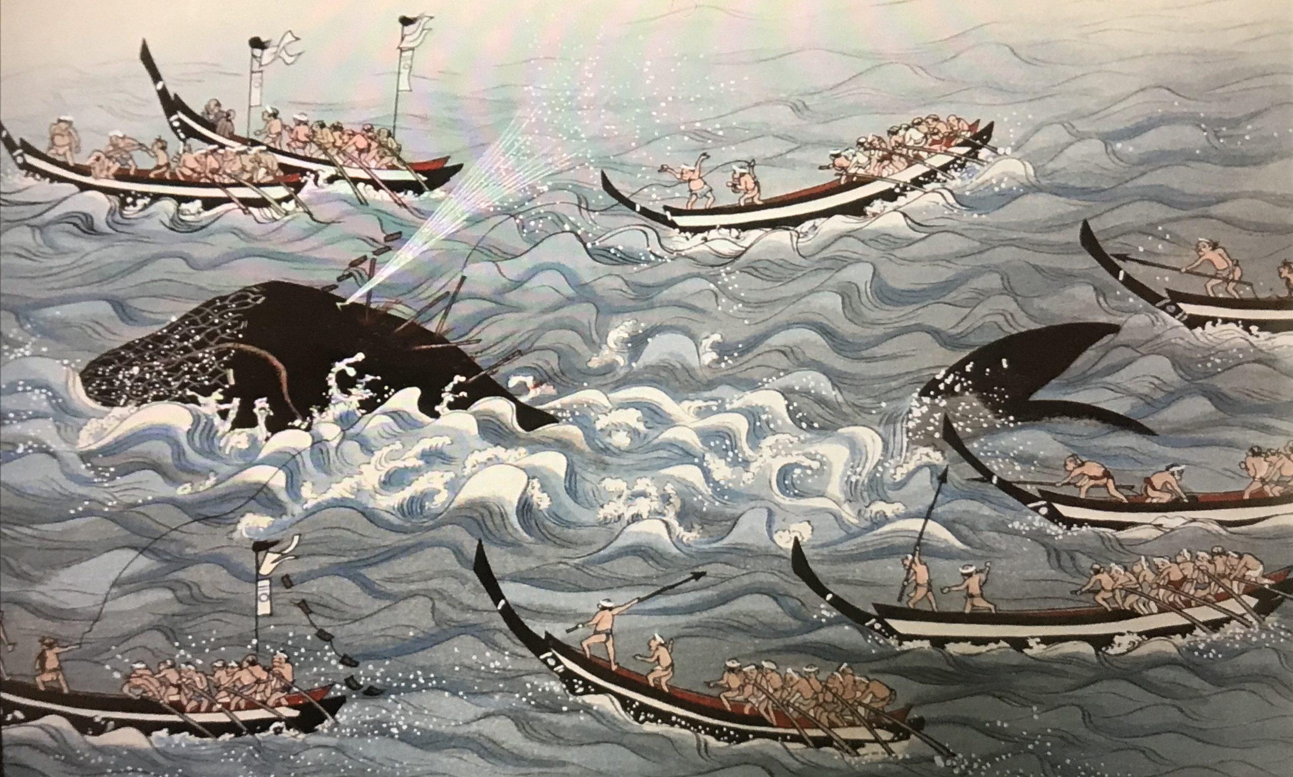 捕鯨、クジラ