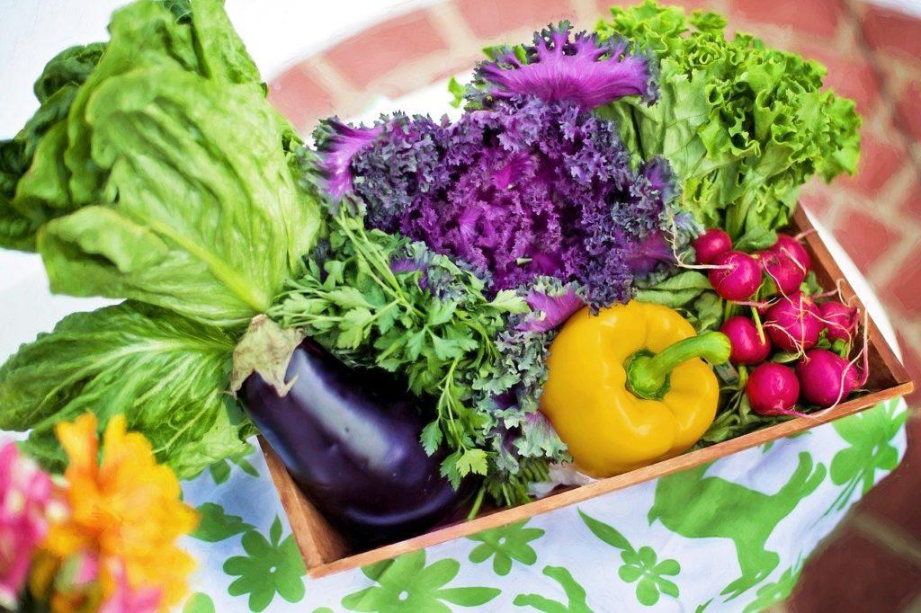 野菜、ナス