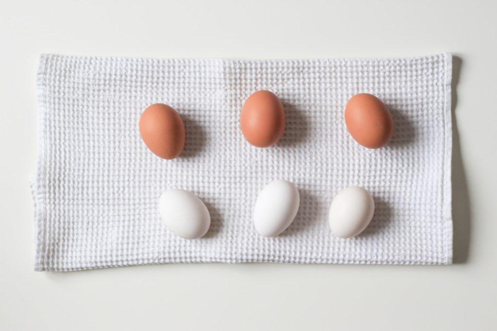 プロテイン、卵